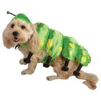 Caterpillar Dog Pet Halloween Costume X-small - Chihuahua ...