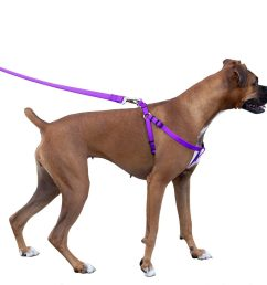 majestic pet dog harness best no pull harness for all dogs sizes large medium small adjustable and heavy duty no pull leash harness perfect lightweight  [ 1007 x 1000 Pixel ]