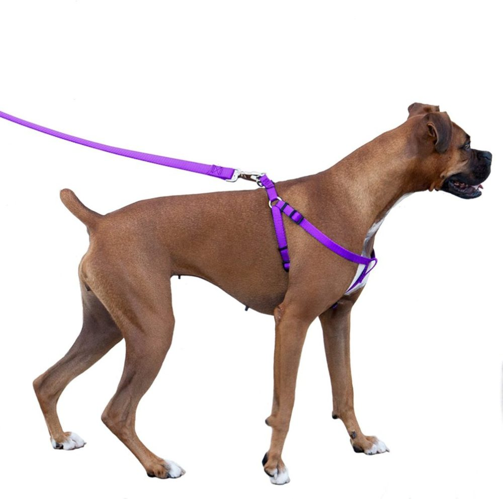medium resolution of majestic pet dog harness best no pull harness for all dogs sizes large medium small adjustable and heavy duty no pull leash harness perfect lightweight