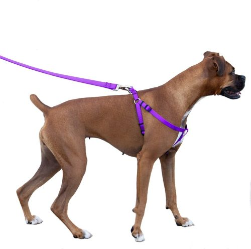 small resolution of majestic pet dog harness best no pull harness for all dogs sizes large medium small adjustable and heavy duty no pull leash harness perfect lightweight