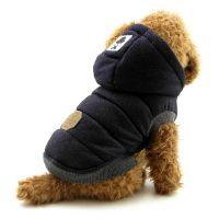 Do Small Dogs Need Winter Coats - Tradingbasis