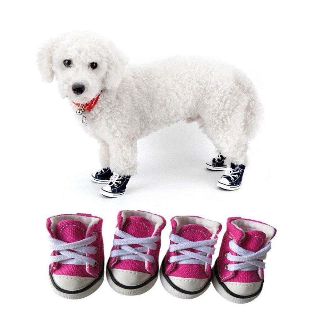 celltek pet dog puppy