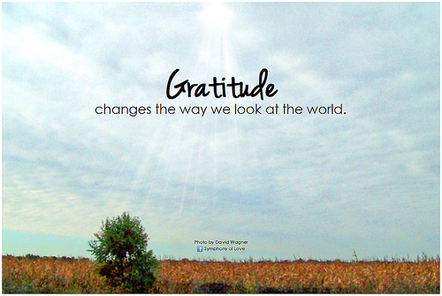 Gratitude As a Habit