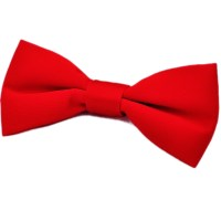 Boys Red Satin Plain Dickie Bow Tie on Elastic Wedding