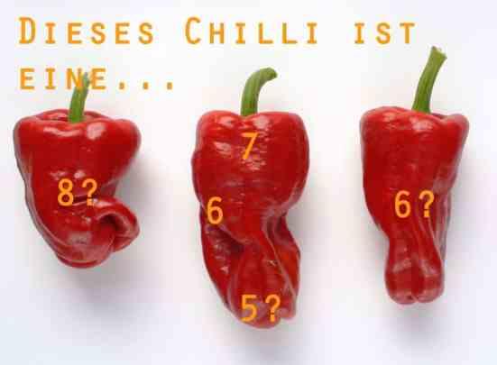 Chilli-Schärfe: Dies Chilli ist eine...