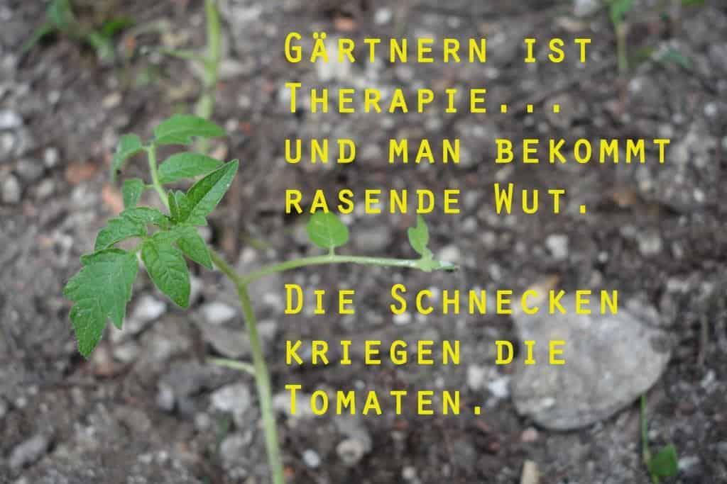 Gärtnern ist Therapie…