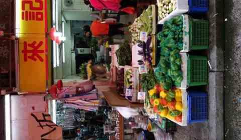 Paprika, grün und im üblichen Regenbogen