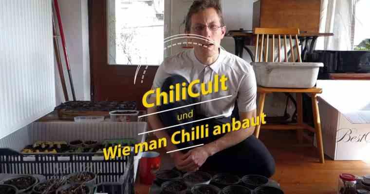 Wie baut man Chili an?
