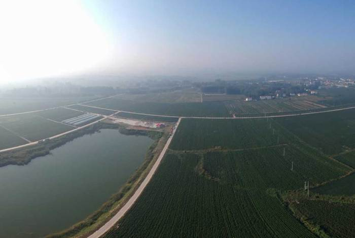 Ausschnitt der Chilli-Anbaubasis von Zhecheng in Henan, China