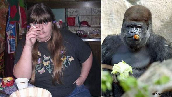 People Animal Twins