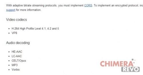 Chromecast formati