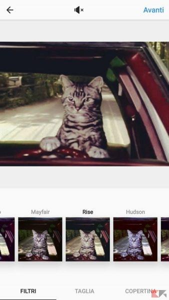 come condividere GIF su instagram - GIPHY