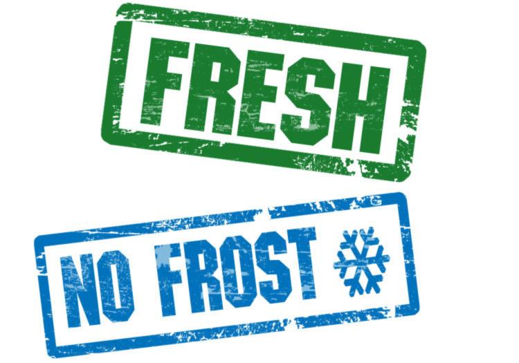Frigorifero No Frost i migliori da comprare  ChimeraRevo