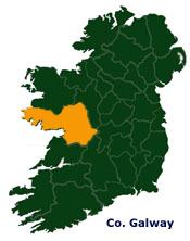 Chimney Ireland - Co. Galway Offices - Chimney and roof repair contractors Head office & Yard in Galway, serving all of the West coast of Ireland and the Midlands