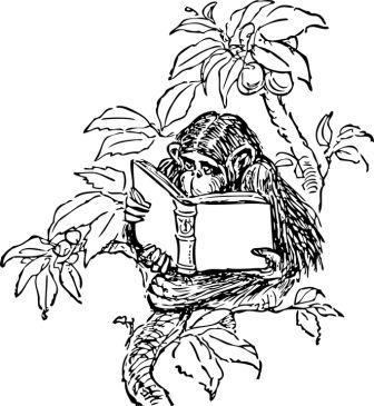 Dibujos de chimpancés » CHIMPANCEPEDIA