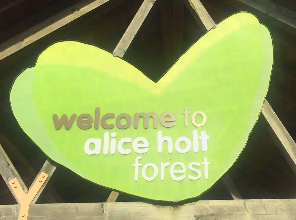 Alice holt forest, the place for exciting outdoor activities in a beautiful woodland setting. Alice Holt Forest Farnham Chimptrips