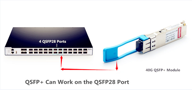 QSFP+ can work on the QSFP28 ports