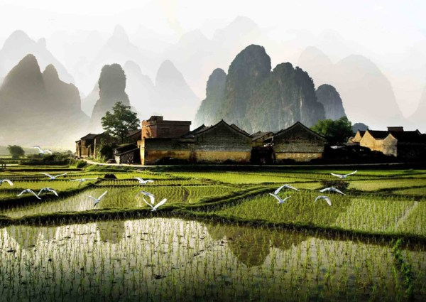 china nature tours landscape