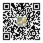 WeChat: jing41201