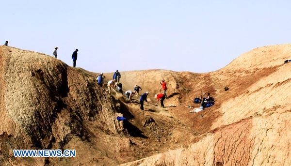 Descubren en China fósil de dinosaurio de hace más de 100 millones de años