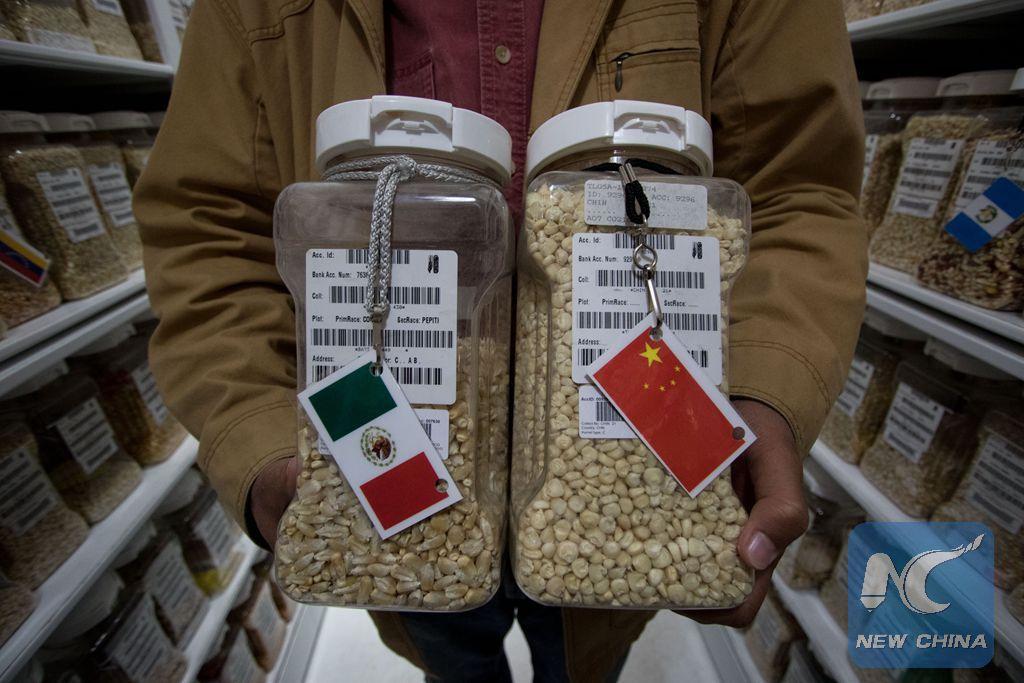 Funcionarios mexicanos viajarán a China y Singapur en busca de diversificar exportaciones
