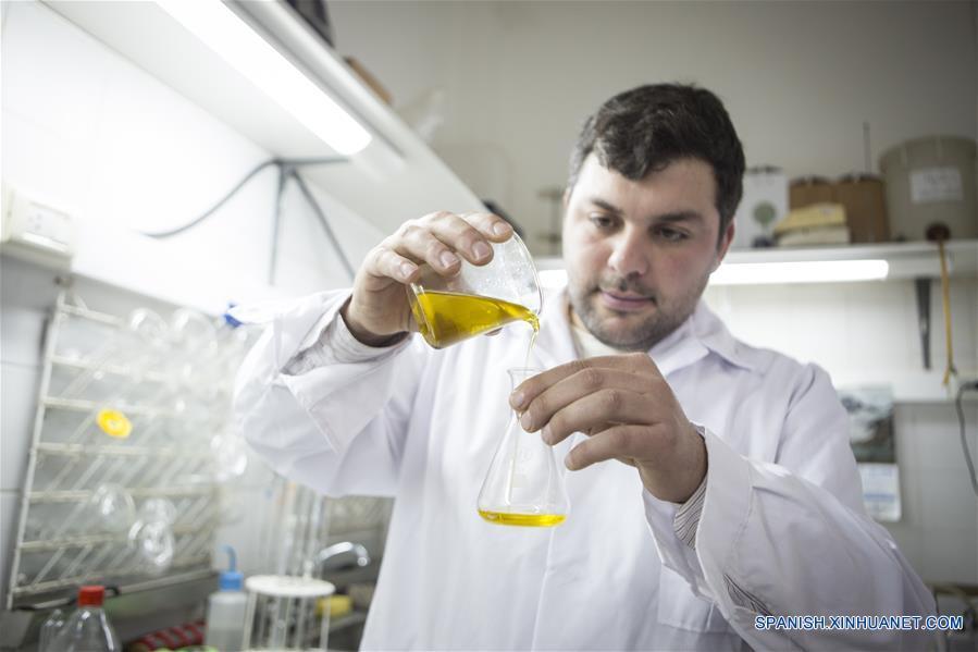 Empresa olivícola de Argentina exporta productos a China