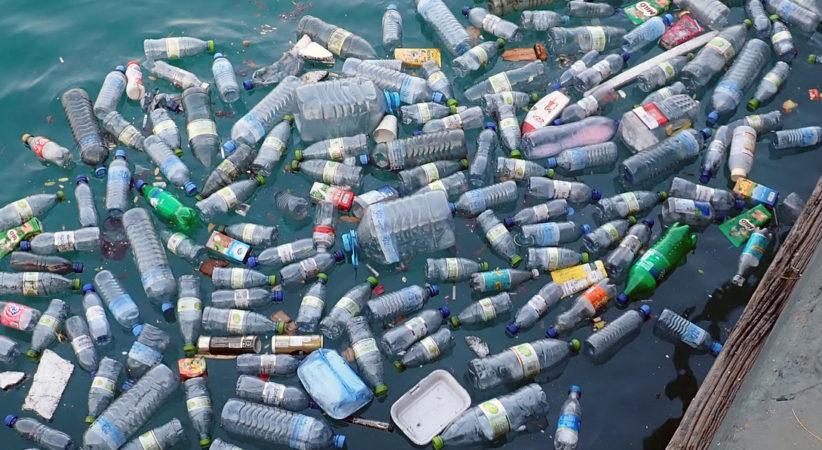 Plástico degradable hecho en China promete el fin de la contaminación del mar