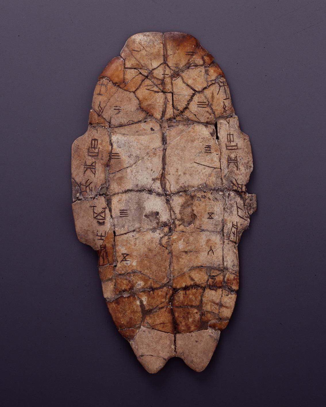 China comenzará conmemoración de 120° aniversario de descubrimiento de inscripciones en huesos de oráculo