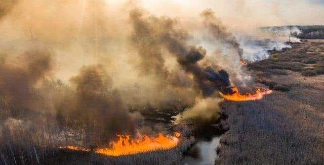 Humo del incendio forestal de Chernobyl continúa mientras casi mil 400 rescatistas trabajan en el sitio