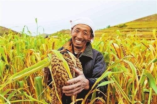 La liberación de la pobreza en China es una contribución mundial