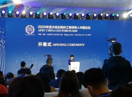 Futuro de APEC es prometedor pese a reveses en globalización: Viceministro chino