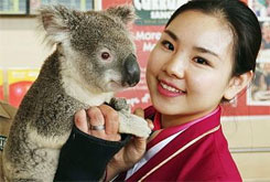 G'Day Mate: Australians the Most Welcoming to Chinese Tourists