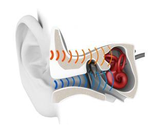 conduzione ossea