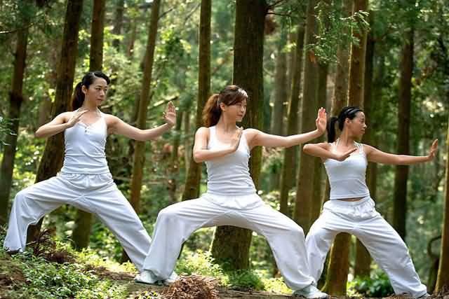 https://i0.wp.com/www.chinatourguide.com/china_photos/beijing/arts_entertainment/Beijing_martial_arts_girl.jpg