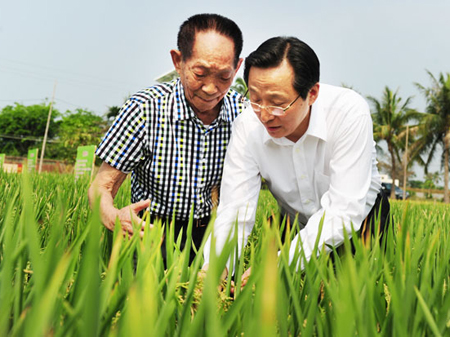 18 tonnes par hectare consacré au riz super hybride