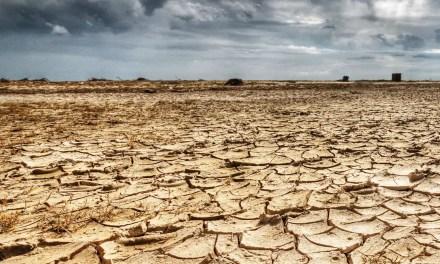 Vidéo à voir. La désertification en Chine