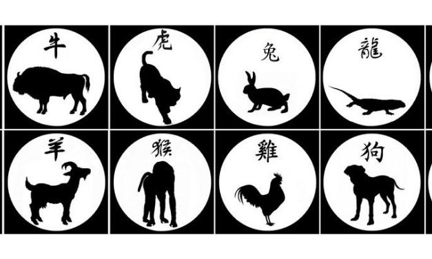 L'insolite du zodiaque chinois