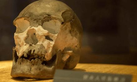 Un crâne humain de plus de 10.000 ans retrouvé en Chine