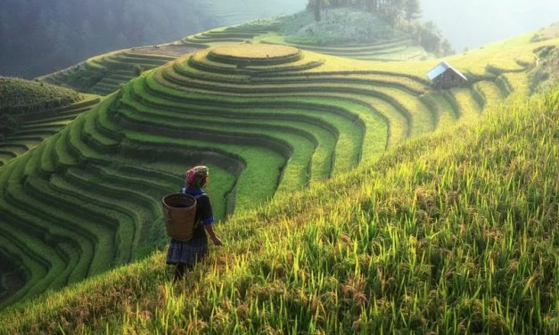 Trafic de femme vietnamiennes : arrestation en Chine