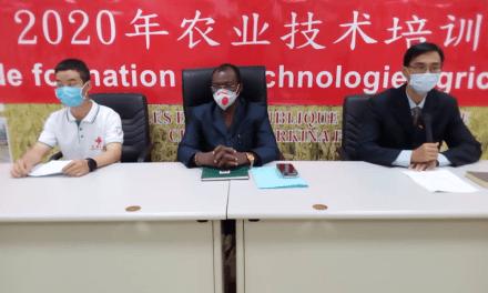 Des experts agricoles chinois du projet mil forment les agriculteurs burkinabés