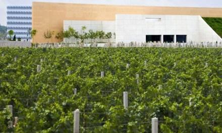 Le marché chinois des vins mousseux très prisé par LVHM