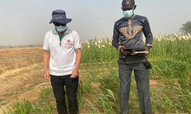 «Sécurité alimentaire au Burkina: les Chinois apportent une contribution inestimable»