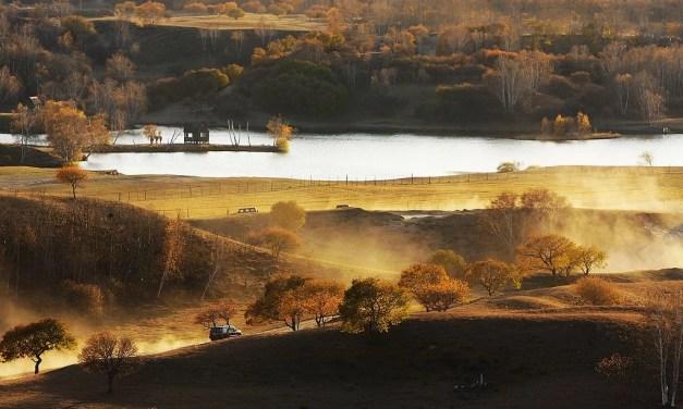 La Chine met un programme spécifique pour les ressources forestières