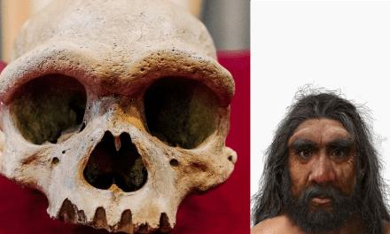Un ancien crâne vieux de 140 000 ans retrouvé caché dans un puits en Chine