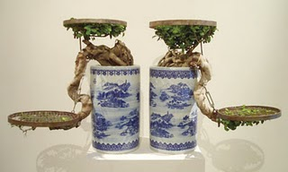Chinese Bonsai Tree