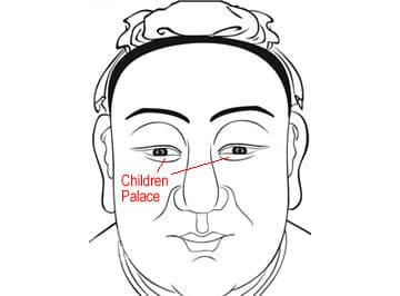 Learn your Children's Fortunes from your own Face