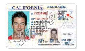 ffym - 加州非法移民可享受的11项权益