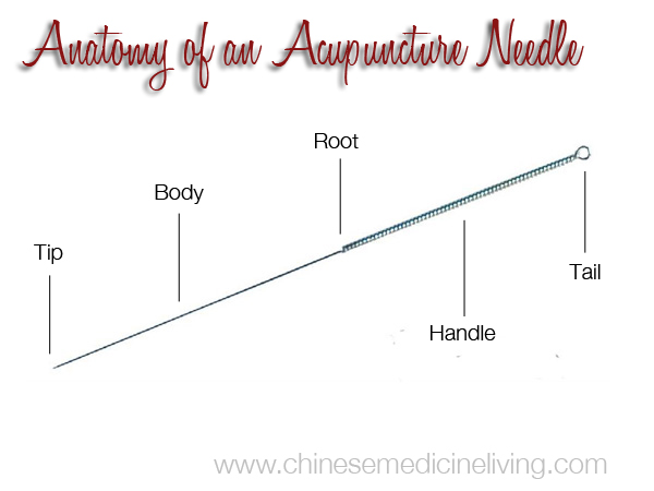 Anatomy of an Acupuncture Needle