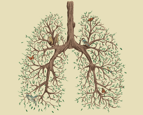 Grief and the Lungs in Chinese Medicine : Chinese Medicine Living