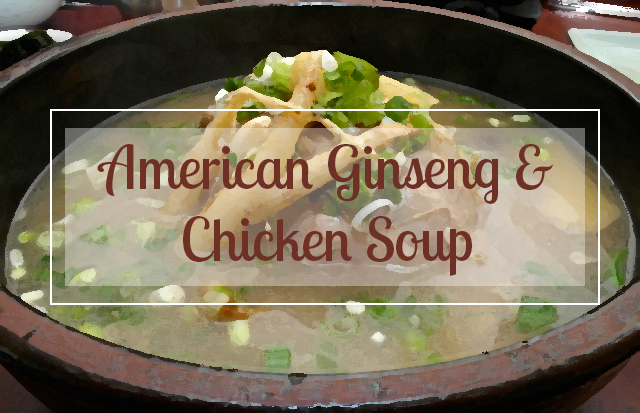 Fall Lung Recipe – American Ginseng & Chicken Soup